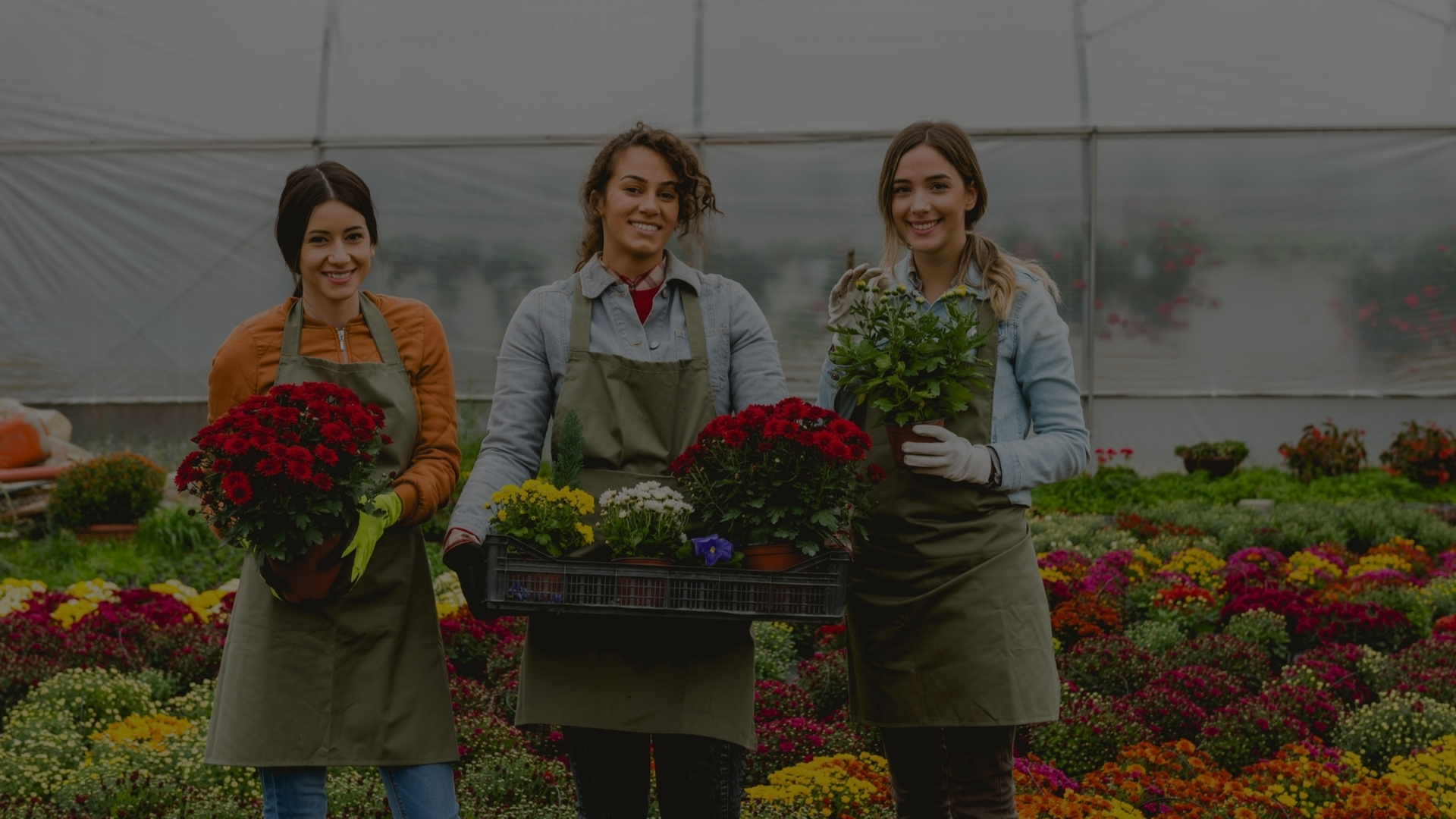 A Definitive Lifting and Handling Checklist For Garden Centres