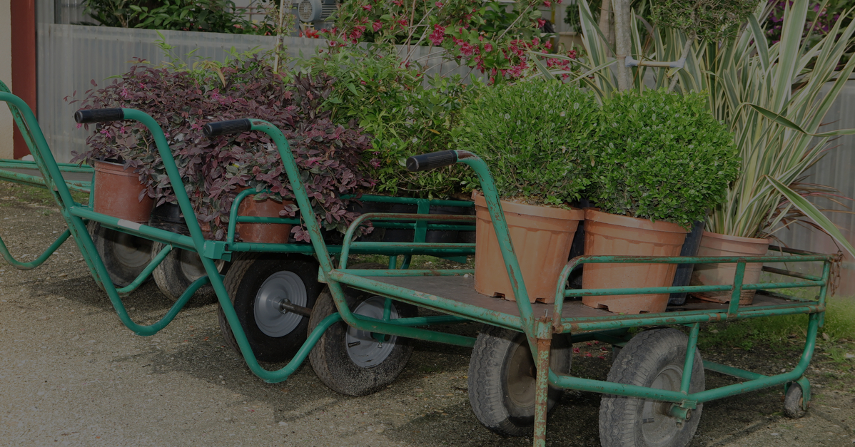 The Essential Guide to Loading and Unloading in Garden Centres
