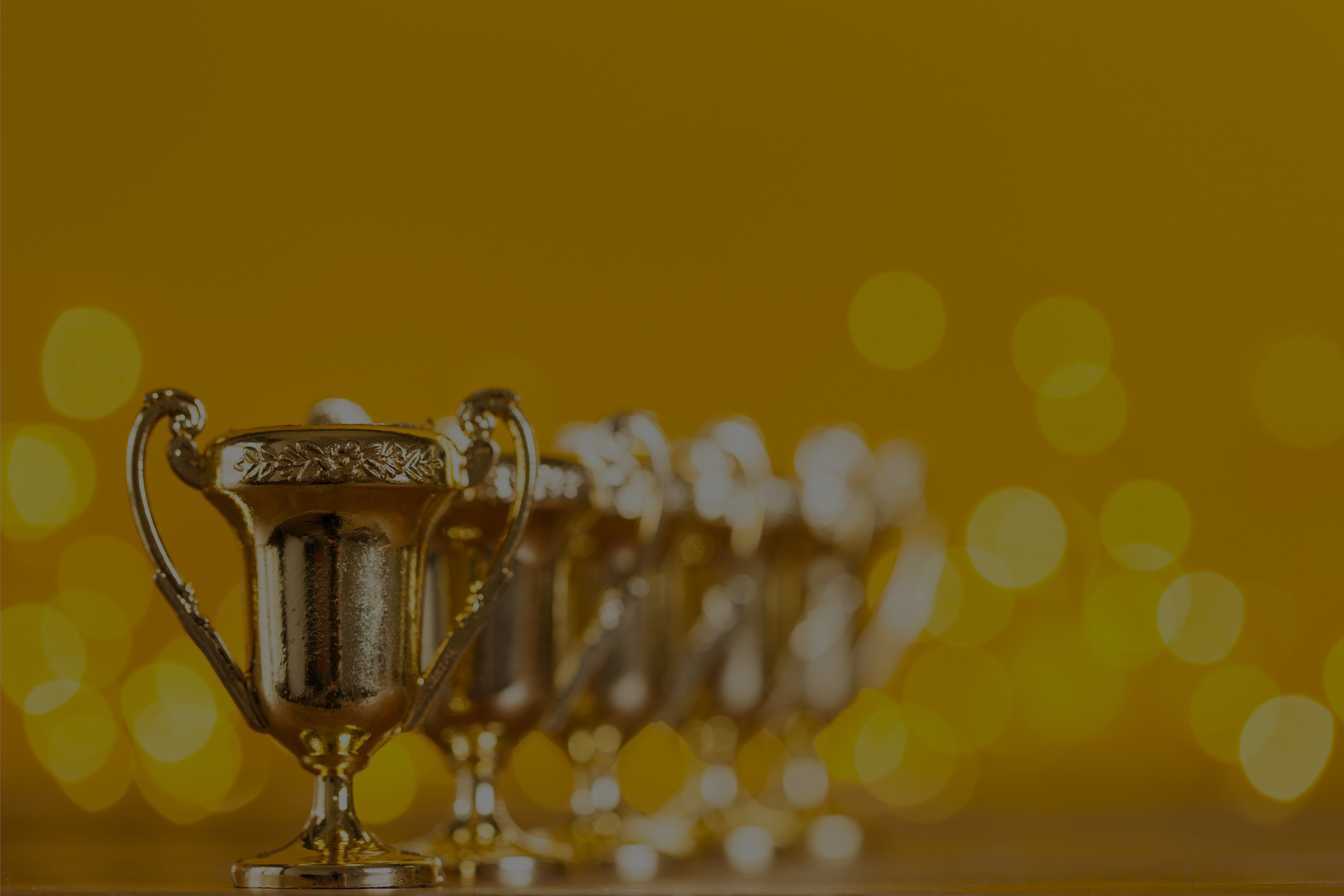 The Safety & Health Excellence Awards 2018 (SHORTLIST)