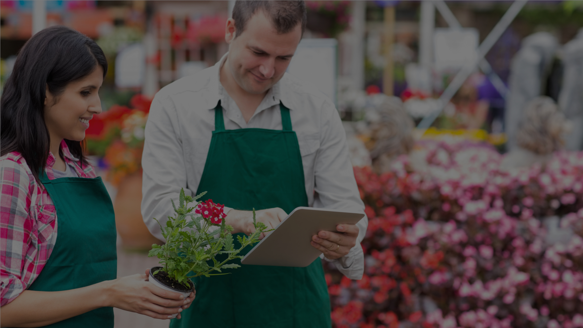 Retail Garden Centres: How To Integrate Your Current Safety Management With the Cloud