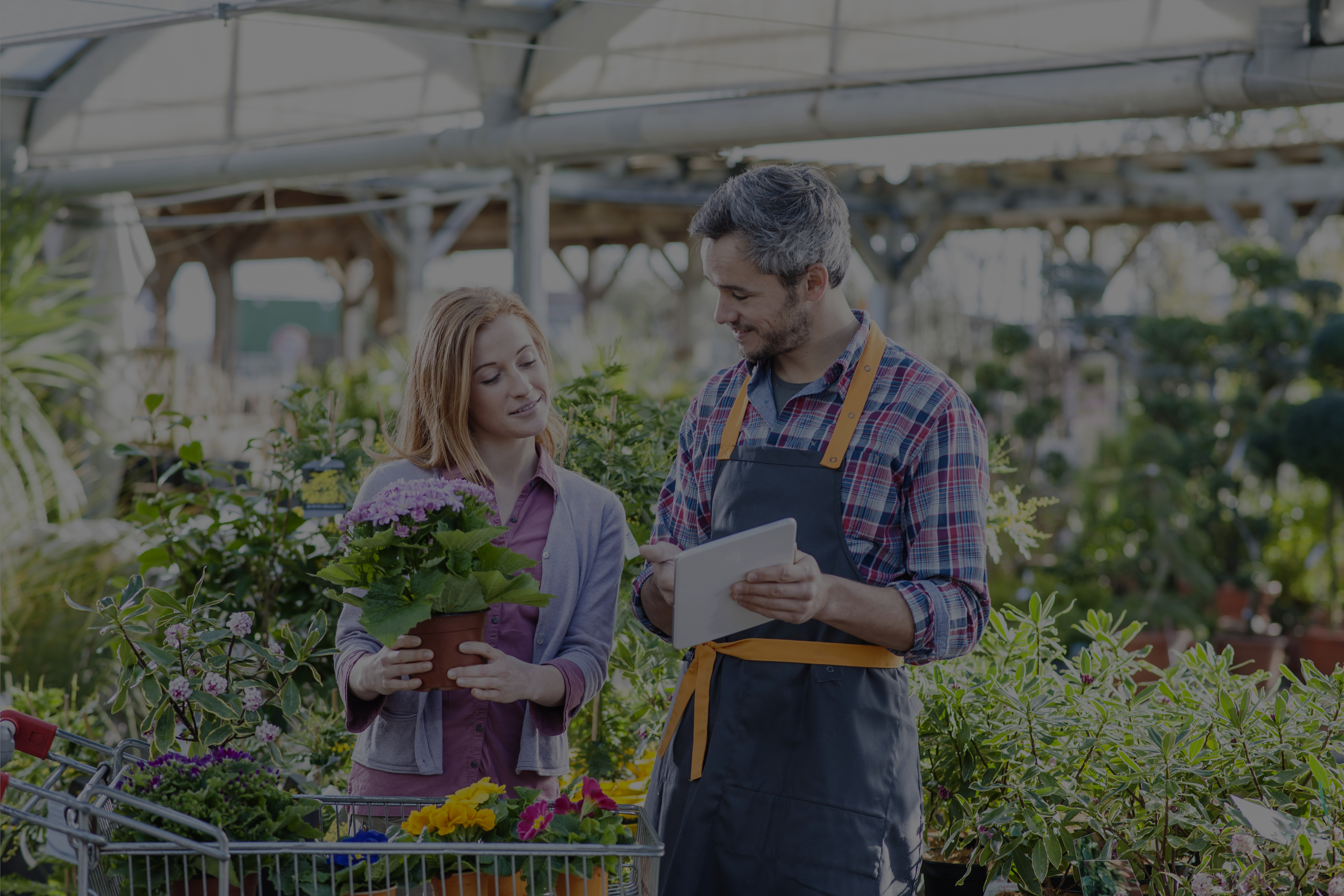 Changing Negative Attitudes To Safety In Garden Centres