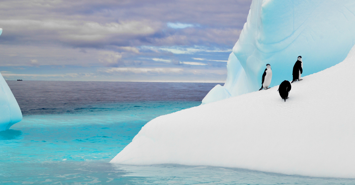 The Iceberg Effect - The Hidden Health and Safety Costs that Quietly Cut Your Company's Profits