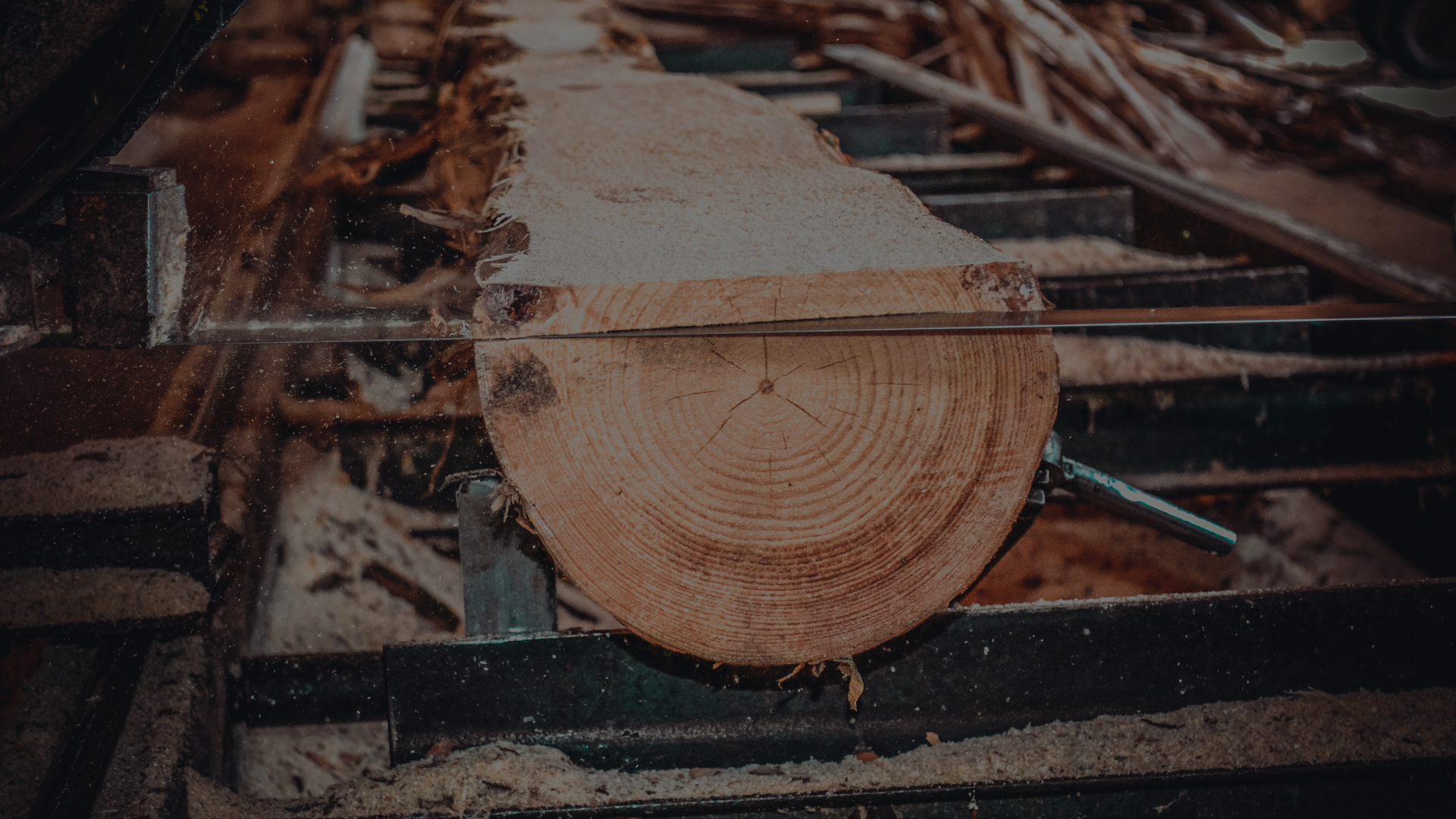 Wood Dust Exposure Prevention and Control In Sawmills